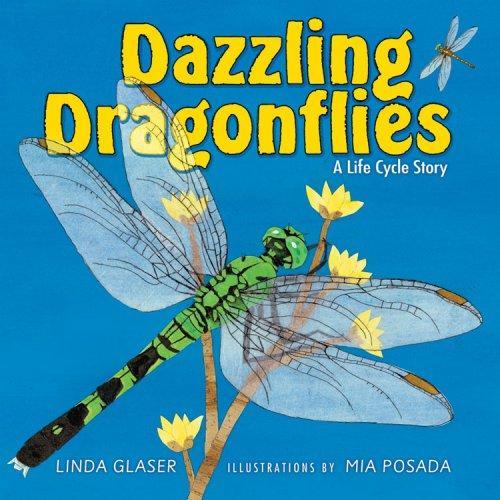 Download Dazzling Dragonflies