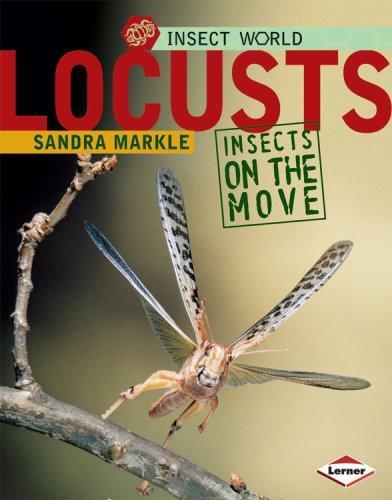 Download Locusts