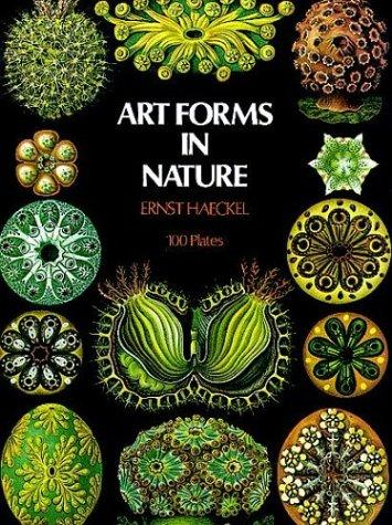 Download Art forms in nature.