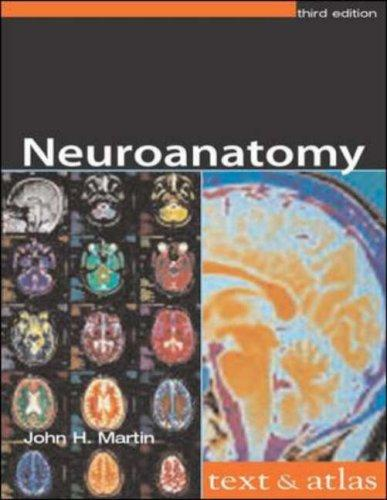 Download Neuroanatomy
