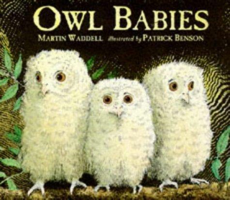 Download Owl Babies