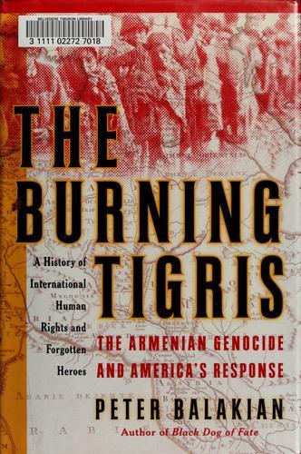 Download The burning Tigris