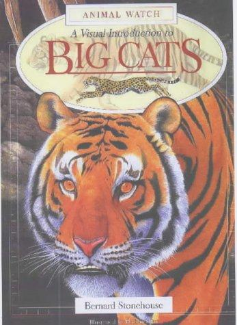 A Visual Introduction to Big Cats (Animal Watch)