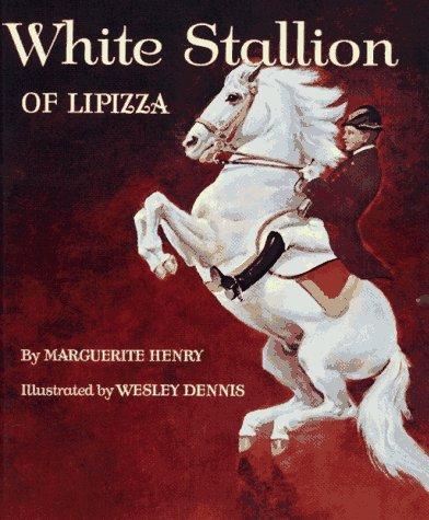 Download White stallion of Lipizza