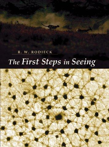 Image for The First Steps in Seeing