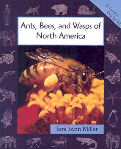 Download Ants, Bees, and Wasps of North America (Animals in Order)