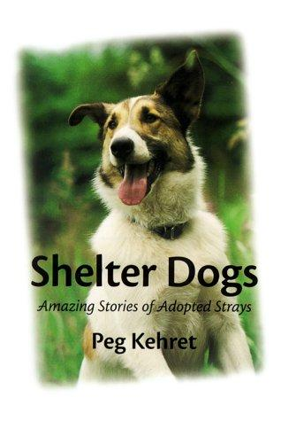 Download Shelter dogs