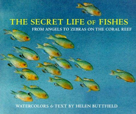 Download The Secret Life of Fishes