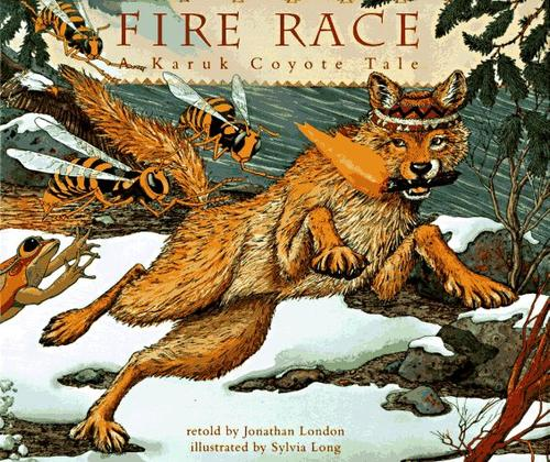 Download Fire race