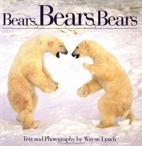 Download Bears, Bears, Bears
