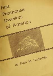 Cover of: First penthouse dwellers of America | Underhill, Ruth Murray